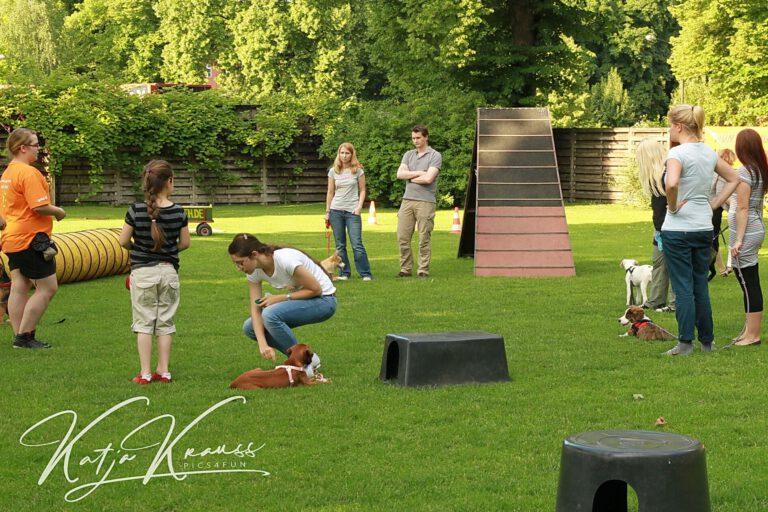 Hundeschule-GREH-11Grund_0E6A0003