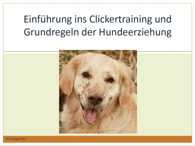 Hundeschule-GREH-26Web_Folie Bedürfnisse002