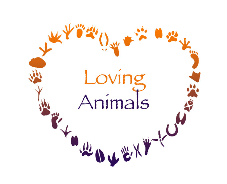 Loving Animals - Hundeschule GREH